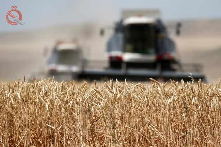 Iraq signs agreement to import wheat and rice from the United States 11820