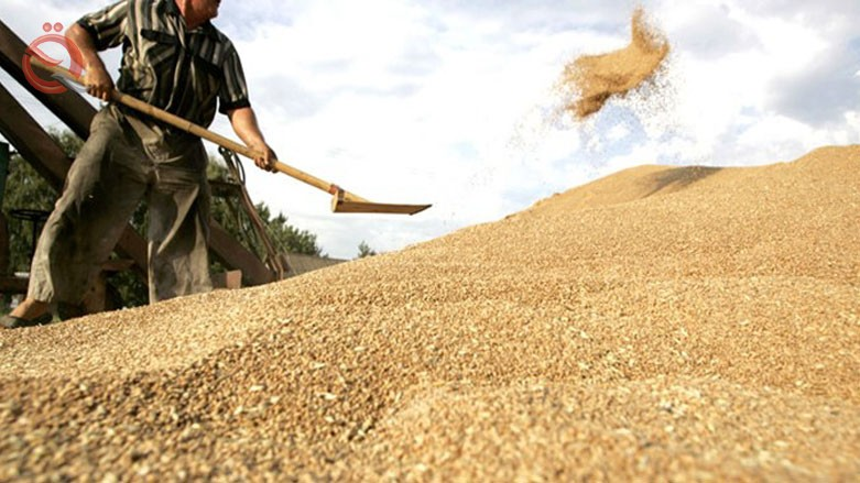 Trade discusses its preparations for the current marketing season 2019 wheat crop 13782