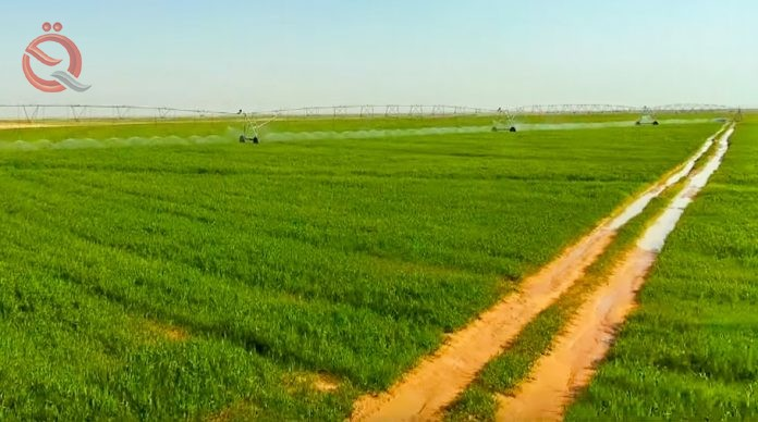 The threshold of Husseiniya opens an agricultural city of 21 thousand dunums 13858