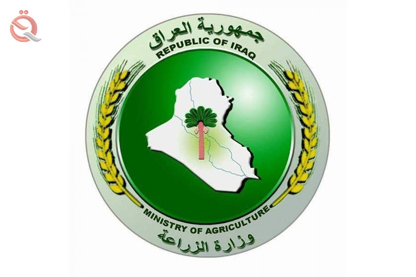 The Minister of Agriculture directs to facilitate the procedures of completing the procedures of renewing agricultural contracts 17493