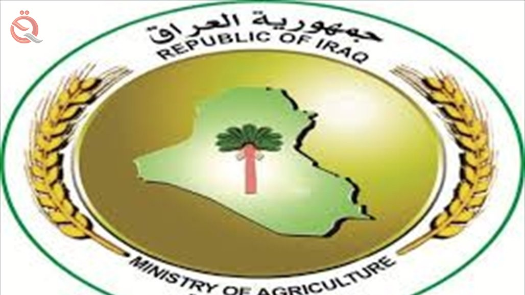 Agriculture announces conditions for the private sector to import feed materials 22262