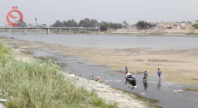 Representative agriculture: a great deal of damage to Iraq from the low water levels coming from Iran 22666