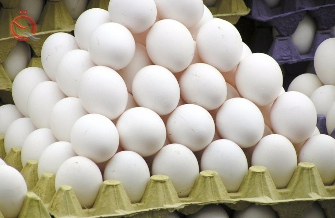 Agriculture: Work is underway to prevent the smuggling of imported poultry, eggs and meat 22972